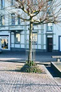 Baumschutzgitter BG5, BG6